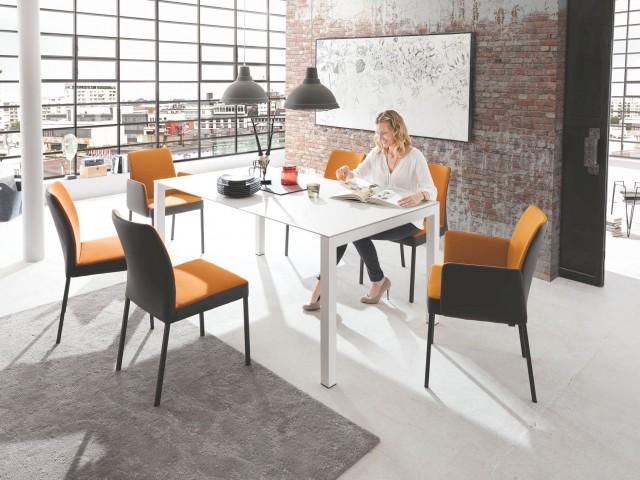 <p>Tischplatte Keramik, Gestell Stahl reinwei&szlig;, ca. 180x100 cm. Ohne Deko.</p>  <p><strong>Stuhl</strong><br /> Bezug Leder/Stoff Bi-ColorPolsterung, Untergestell anthrazit, eckig.</p>  <p><strong>Sessel mit Armlehnen</strong><br /> Bezug Leder/ Stoff Bi-Color-Polsterung, Untergestell anthrazit, eckig.</p>